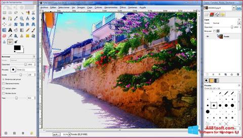 Skärmdump GIMP för Windows 8.1