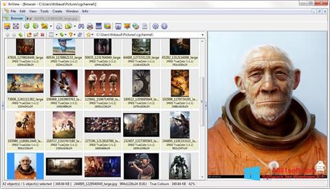 Skärmdump XnView för Windows 8.1