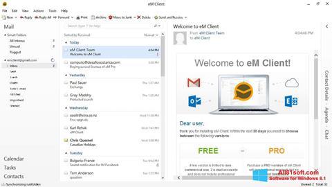 Skärmdump eM Client för Windows 8.1