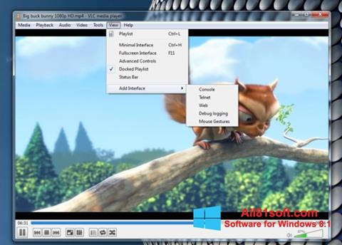 Skärmdump VLC Media Player för Windows 8.1