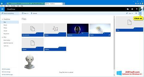 Skärmdump OneDrive för Windows 8.1
