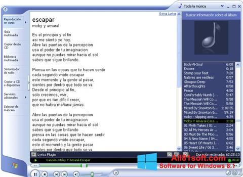 Skärmdump Windows Media Player för Windows 8.1