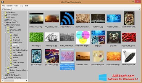 Skärmdump IrfanView för Windows 8.1