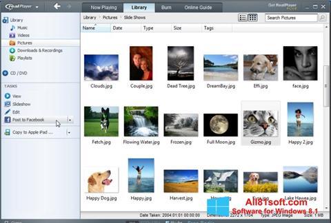 Skärmdump RealPlayer för Windows 8.1